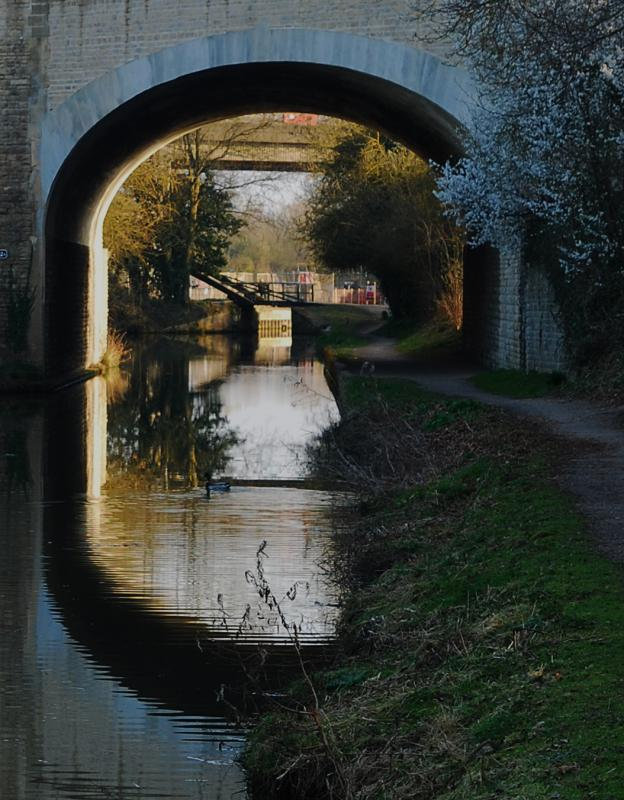 Oxford Canal Bridges